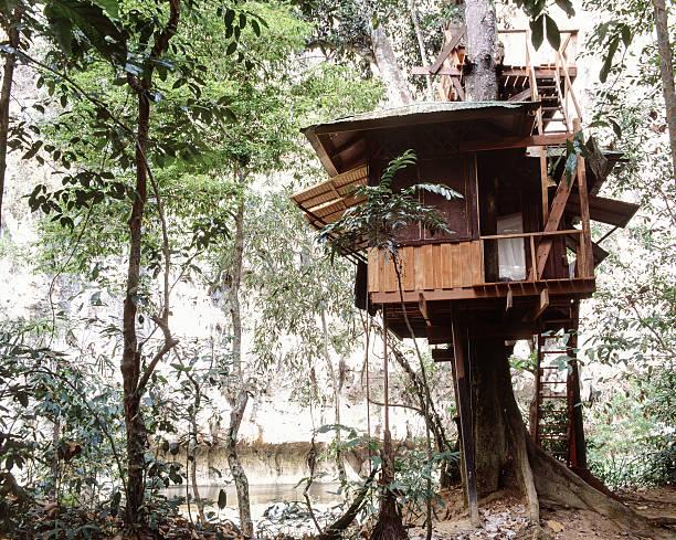Comment construire une cabane dans un arbre